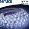 indicatore luminoso di striscia flessibile della striscia LED LED di 9.6W 12V/24V 60LEDs 2835 LED