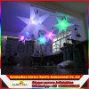 معياريّة زخرفيّة قابل للنفخ يعلّب نجم أضواء/قابل للنفخ [لد] ضوء