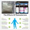 Massa die het Farmaceutische Testosteron Cypionate bouwen van Cypionate van de Test van Chemische producten