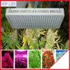 a estufa 300W-1200W/diodo emissor de luz médico das plantas cresce luzes para vendas por atacado