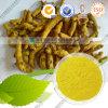 Curcumine normale 95% de colorant de nourriture d'approvisionnement d'usine