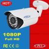 caméra de sécurité infrarouge d'IP de balle de webcam visuel de la surveillance 2MP