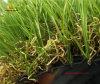 Tappeto erboso artificiale professionale dell'erba per il giardino amichevole