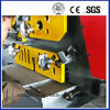 Section Plate Cutting Tools pour Hydraulic Iron Worker (séries de Q35Y)