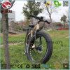 350W 전기 자전거 En15194 26  합금 프레임 리튬 건전지 바닷가 자전거 무브러시 모터 LCD 디스플레이 Ebike