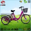 250Wリチウム電池3の車輪の自転車の電気三輪車