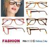 Frames populares dos Eyeglasses do frame de sistema ótico 2016 de Eyewear da forma