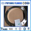 En1092-1 Type01 Dn500 Pn10 Plff 304L