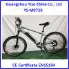 Bicicleta de montanha/Bicicleta elétricas da montanha