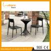 Mobília 2 Seater do Rattan do jardim com a alta qualidade para a venda