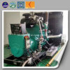20kw -500kw China Manufacturer OEM Cogeneration Cummins Biogas Generator
