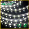 IP20 5050 30LED/M SMD LED Strip Light voor Decoration