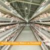 Поставкы фермы цыпленка гальванизировали клетку ячеистой сети