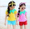 한 조각 소녀 형식 다채로운 수영복