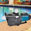 Swimmingpool u. Mineralwasser-Pumpen-elektrischer Selbstzündsatz-Druckfilter