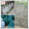 PVC Coated/Galvanized Hexagonal Gabion Box для Slope Revetment