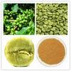Estratto verde del chicco di caffè di iso con l'acido clorogenico di 50%