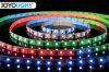 Nuovo indicatore luminoso di nastro variopinto magico del LED