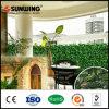 Sunwingの最も売れ行きの良いプラスチック人工的な塀