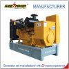 Generator des Biogas-120kw mit parallelem Geschäft mit einer Jahr-Garantie