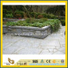 정원 안뜰을%s G603 Grey Granite Flag Stone