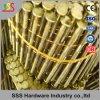 Chiodo della bobina del collegare del chiodo del pallet dalla fabbrica di SSS