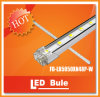 High Quality SMD5050 48LEDs 24VDC LED Strip with CE and RoHS Approved