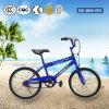 Bicicleta de uma forma de 14 polegadas para a menina com alta qualidade Jsk-Bkb-055