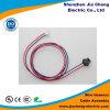 M12 impermeabilizan el enchufe del conector a la asamblea de cable