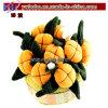 يعلن هبات لأنّ بينيّة [دكرأيشن] نسيج برتقاليّ قرع زهرة ([غ1021])