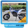Bici elettrica 500W 24V della sporcizia