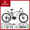la visualización eléctrica del LCD de la bici de la batería de litio de la E-Bici del freno de disco de la bicicleta de la montaña 250W con En15194 aprobó