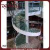 Escaleras espirales del vidrio Tempered (DMS-1006)