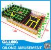 Standard internazionale Trampoline per Playground (QL-1201J)