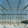 La structure métallique industrielle préfabriquée pour l'atelier/entrepôt/a jeté (ZY351)