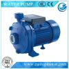 Cpm Piston Pumps für Trinkwasser mit IP44 Protection