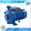 IP44 Protection를 가진 Clean Water를 위한 Cpm Piston Pumps