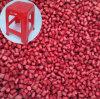 Colorear de color rojo oscuro rojo brillante de Masterbatch del color rojo de Masterbatch con alta calidad