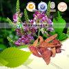 Caulis naturel Spatholobi de matière première de phytothérapie