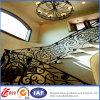 Residential lussuoso Modern Wrought Iron Railings (dhrailings-25)