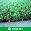 長い使用のゴルフパット用グリーンの草