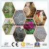 Rete metallica esagonale di alta qualità, rete metallica del pollo