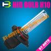 숨겨지은 H10/HID 크세논 빛 (숨겨지은 자동 램프 H10)