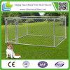 canil ao ar livre galvanizado clássico do cão do pé 10X10X6 para a venda