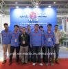 Fornecedor profissional da máquina de envolvimento de Shirnk (YCTD)
