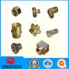 Encaixes de cobre do CNC da precisão com preço do competidor