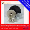 Ring/Circle aggloméré Neodymium (NdFeB) Magnet pour Speaker
