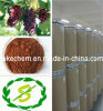 OPC antienvejecedor natural del extracto el 95% del germen de la uva/OPC soluble en agua del extracto el 95% del germen de la uva