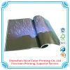 Stampa del catalogo del Booklet Printers Company di servizio di stampa dello scomparto mensile