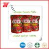 Tomatenkonzentrat-Tomatensauce mit allen Größen